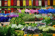 Оптовые поставки цветов по Казахстану